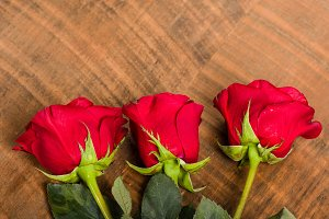 Three red roses in a row
