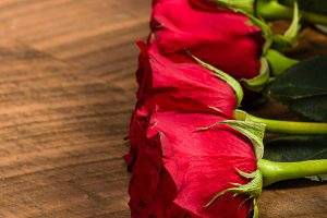 Bright red roses in a row