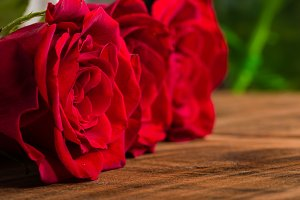 Three red roses narrow focus