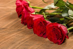Red roses in a row on a table
