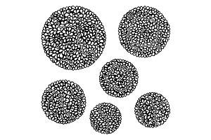 Doodle monochrome mandala set vector