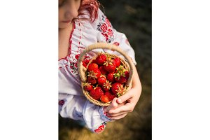 Closeup of woman's hands holding basket with organic garden summer strawberry berries. Healthy lifestyle and healthy eating.Fruit and berries.