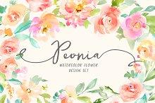 Peonia Watercolor Design Set