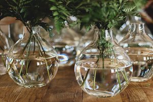 Foliage in round vases