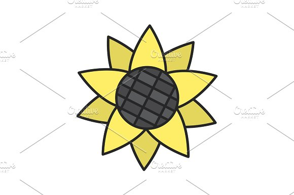 Sunflower Head Color Icon
