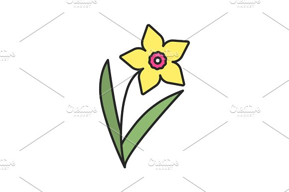 Daffodil Color Icon
