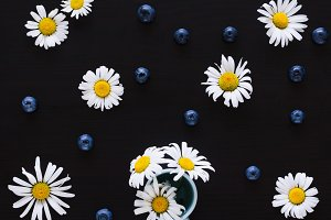 Chamomile flowers flat lay
