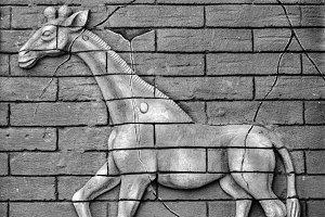 Wall Wear Patterns in Relief