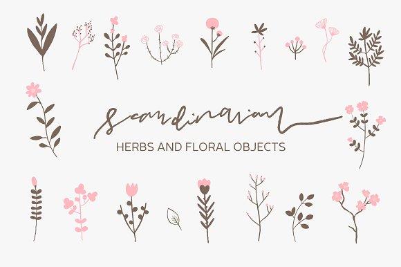 Scandinavian Herbs And Flowers