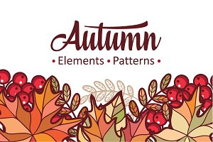 Autumn leaves. Patterns. Bundle