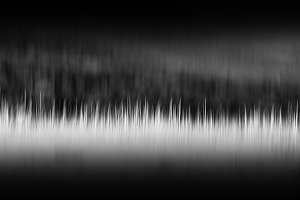 Vertical black and white motion blur grass background