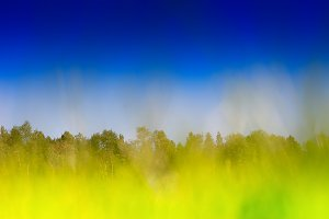 Horizontal grass on summer field bokeh background