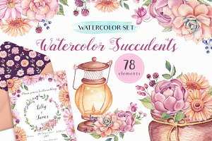- 50% OFF - Watercolor Succulents