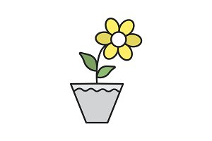 Crocus in flowerpot color icon