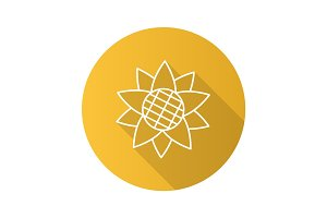Sunflower head flat linear long shadow icon