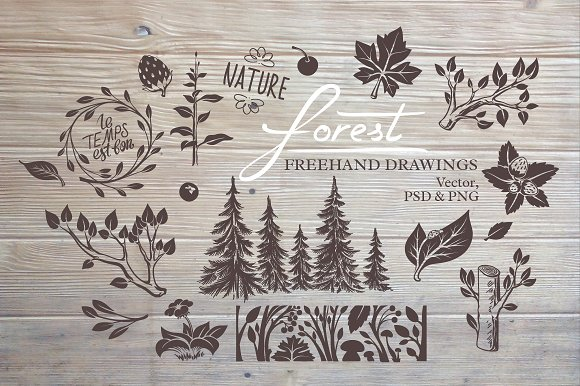 Forest Floral Freehand Drawings