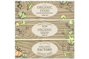 Organic Shop with Fresh Tasty Natural Food Posters