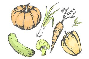 Graphic Agricultural Harvest of Vegetables Set