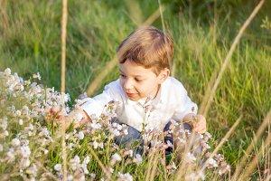 Happy cute kid picking flowers