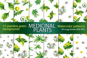 Watercolor medicinal plants patterns