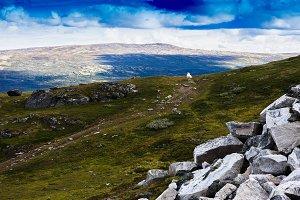 Norway mountain sheep landscape background