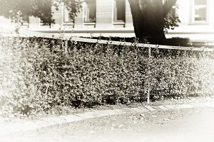 Horizontal park fence sepia background