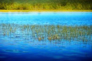 Grass blades in Norway lake landscape background