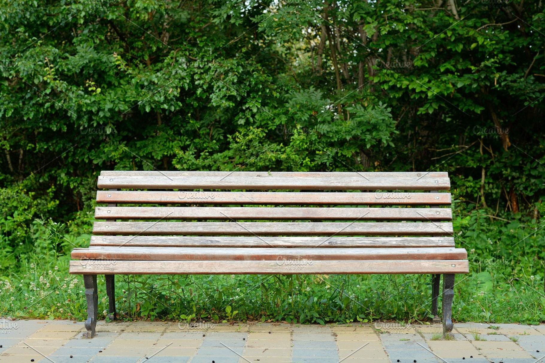 Old Wooden Bench In Park Nature Photos Creative Market