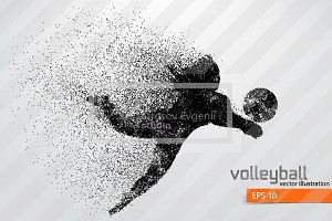 Silhouette of a volleyball player