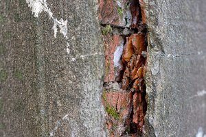 crack in an old brick wall