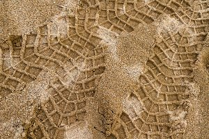 SUV tire marks on the sand