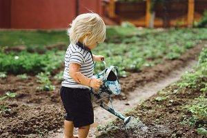 small boy in the garden