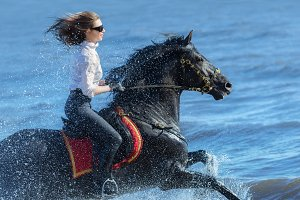 Horse woman and Spanish black horse