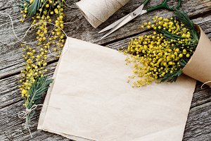 Bouquet of mimosa. bandages twine and scissors on rustic wooden table, old paper for text