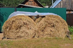 Haystack, covered plastic sheeting - agriculture farm at summer village