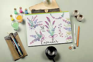 Lavender watercolor clipart flower
