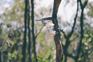 Hanging Mason Jar Vase in Tree