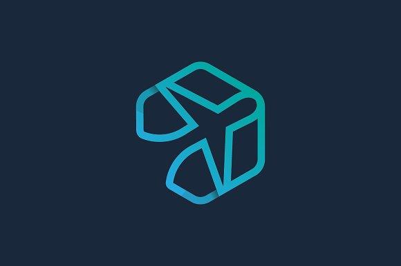 Airplane Hexagon Logo