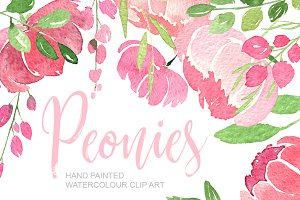 Pink watercolour peonies PNG clipart