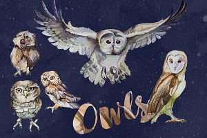 Watercolor Owls Clipart Set