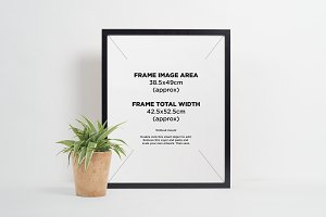 Black picture frame + gold plant pot