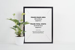 Black picture frame + large plant