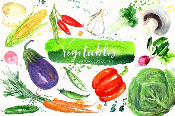 Vegetables. Watercolor clipart.-Graphicriver中文最全的素材分享平台