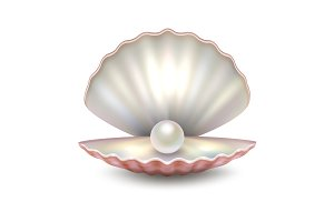 Vector pearl shell.