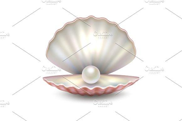Vector Pearl Shell