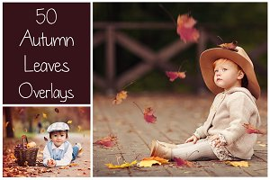 50+ Autumn Leaves Overlays