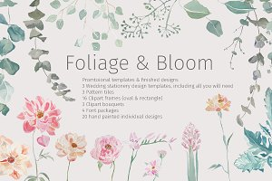 Foliage & Bloom Package