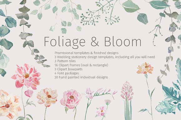 Foliage Bloom Package