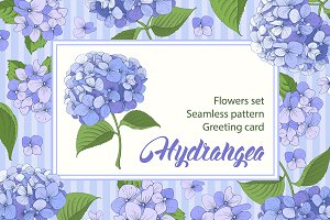 ✿ Hydrangea. Vector set ✿