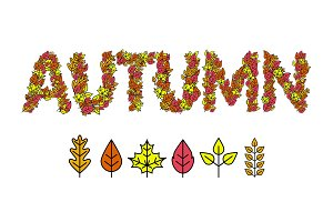 Autumn Design Leaves of trees. Vector illustration